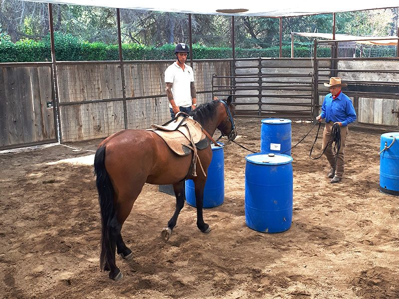 Monty Roberts horse training - Simon Marrier d'Unienville, Monty Roberts Certified Instructor, working with Monty Roberts and Diego at Flag Is Up Farms
